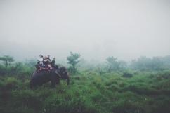 CHITWAN (27.5000° N, 84.3333° E)